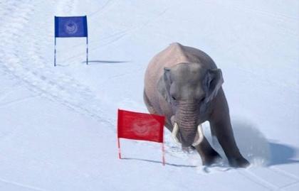 Imagen Xilam Animation, en negociaciones para adquirir Cube Creative
